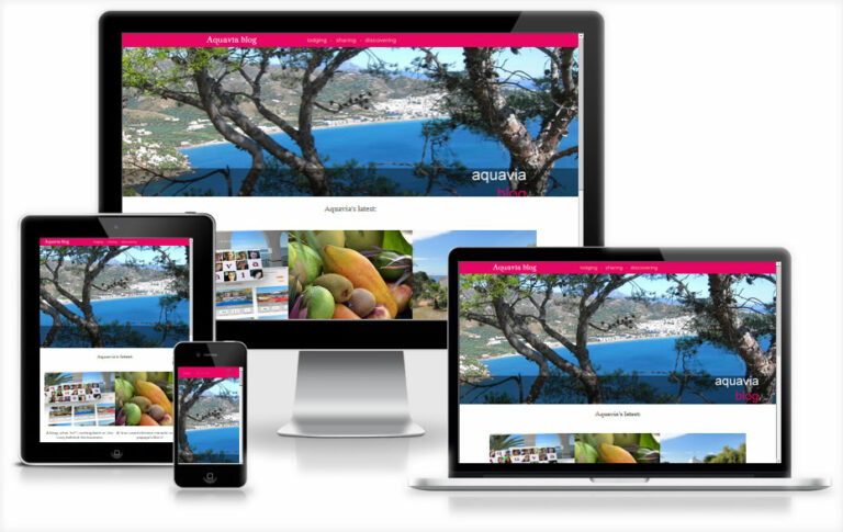 mango design webdesign friesland 02