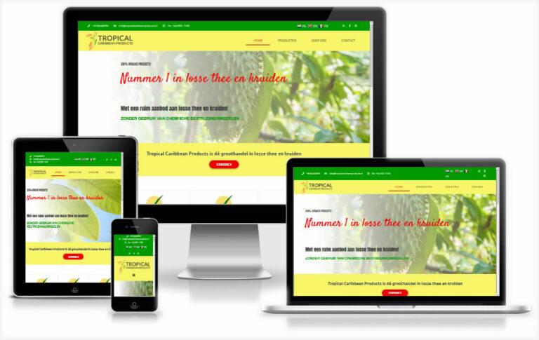 mango design webdesign friesland 14