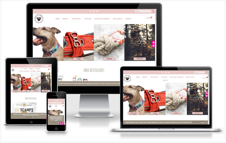 Betaalbare website webdesign Friesland